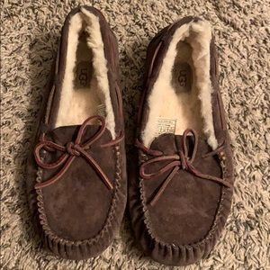 Dark brown UGG Slipper
